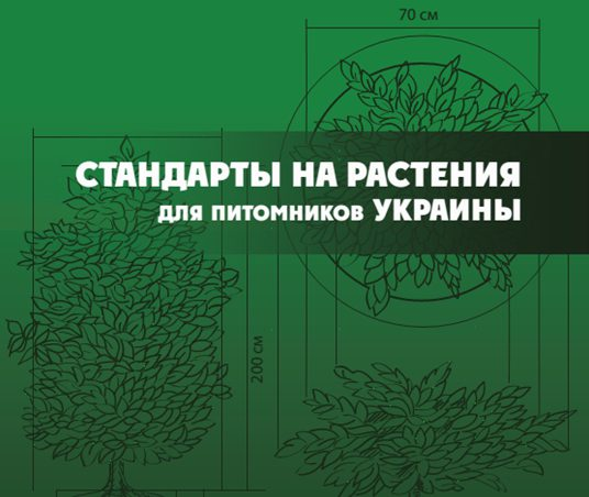 Стандарты посадочного материала Ассоциации «Украинская растительная индустрия»