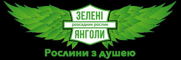Zeleni Yangoly nursery joined AURI Association